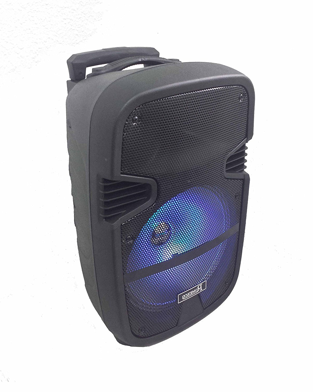 Altavoz Portatil Bluetooth Bqdd Altavoz Portatil Trolley Bluetooth Karaoke Con Microfono Radio