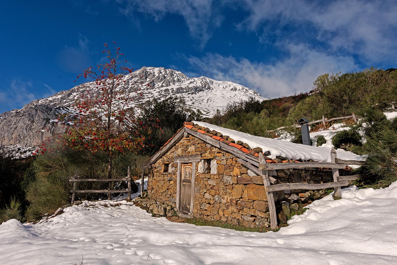 Cabañas En asturias Kvdd Flores Y Paisajes De asturias Puertos De Agà Eria Nieve De Otoà O