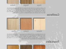 Colores Madera Muebles Etdg Infografà A Los Colores De La Madera