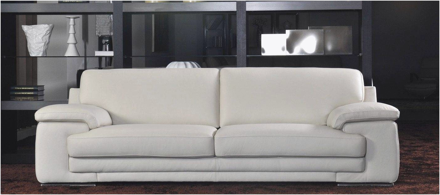 Como Limpiar Un sofa De Piel Blanco Dddy sofa O Inspirierend O Limpiar sofa De Piel Blanco Zuhause