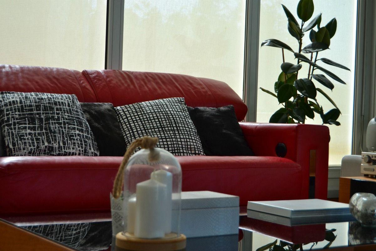 Decorar sofa Con Cojines Dddy sofa Rojo Inspiracià N Para Decorar Tu sofa Con Diferentes Cojines