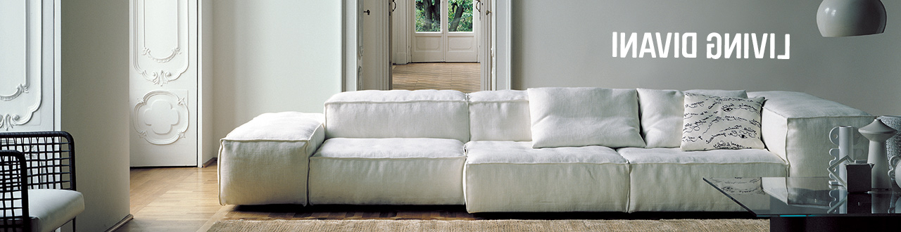 Divano sofas D0dg Living Divani Space Furniture