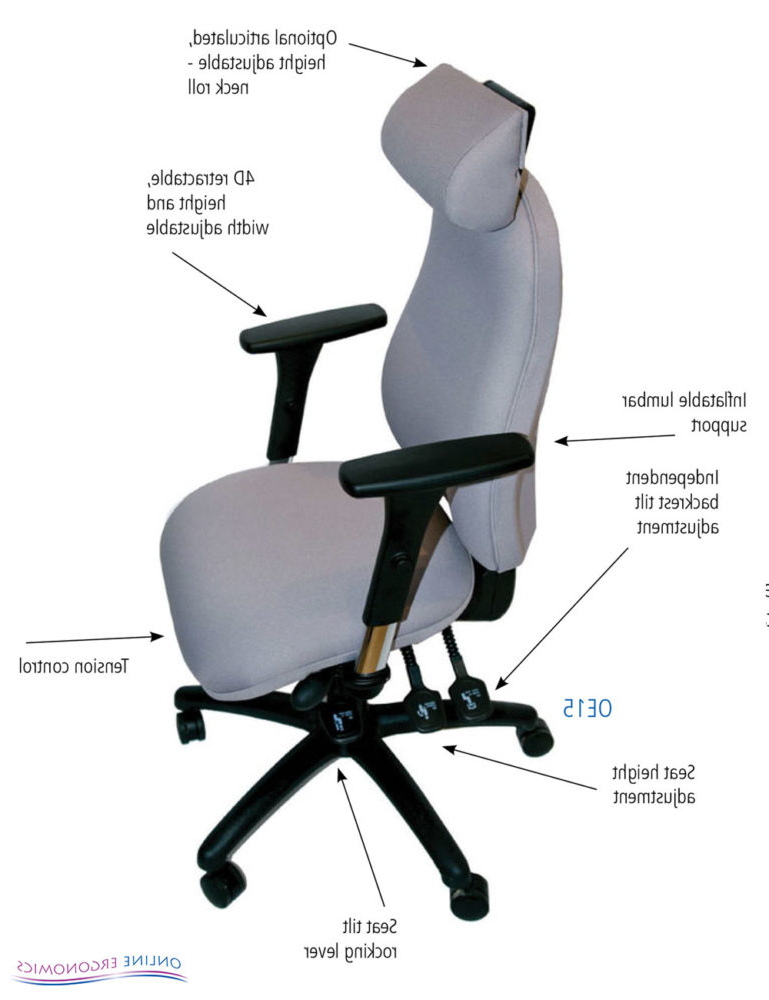 Ergonomic Chair D0dg Oe15 Ergonomic Chair Online Ergonomics