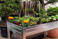 Mesa Huerto Txdf Mi Primer Huerto Urbano Mi Primer Huerto Urbano Primavera