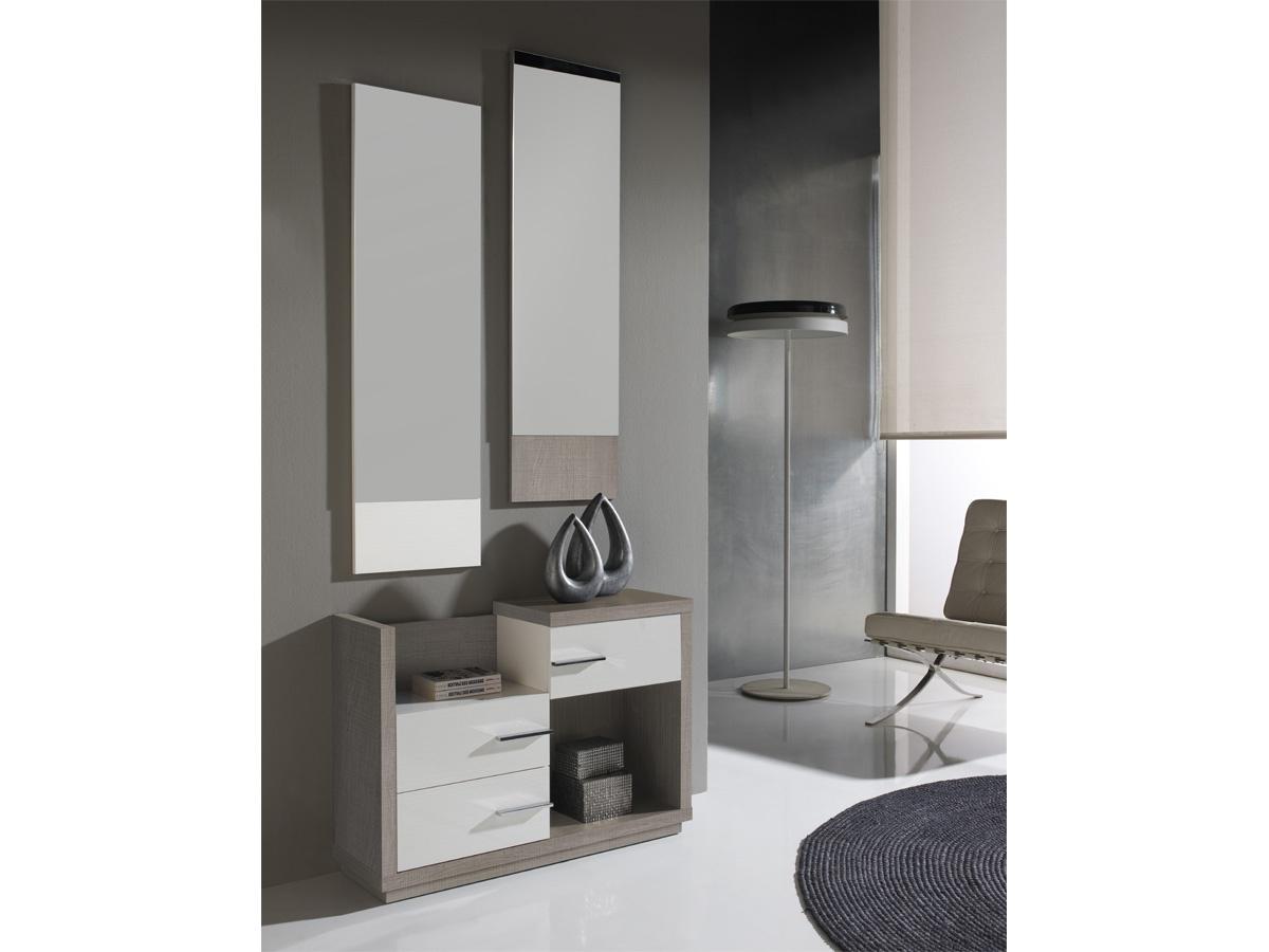 Muebles Para La Entrada Tqd3 Mueble De Entrada Moderno Color Nogal Y Detalles En Visà N