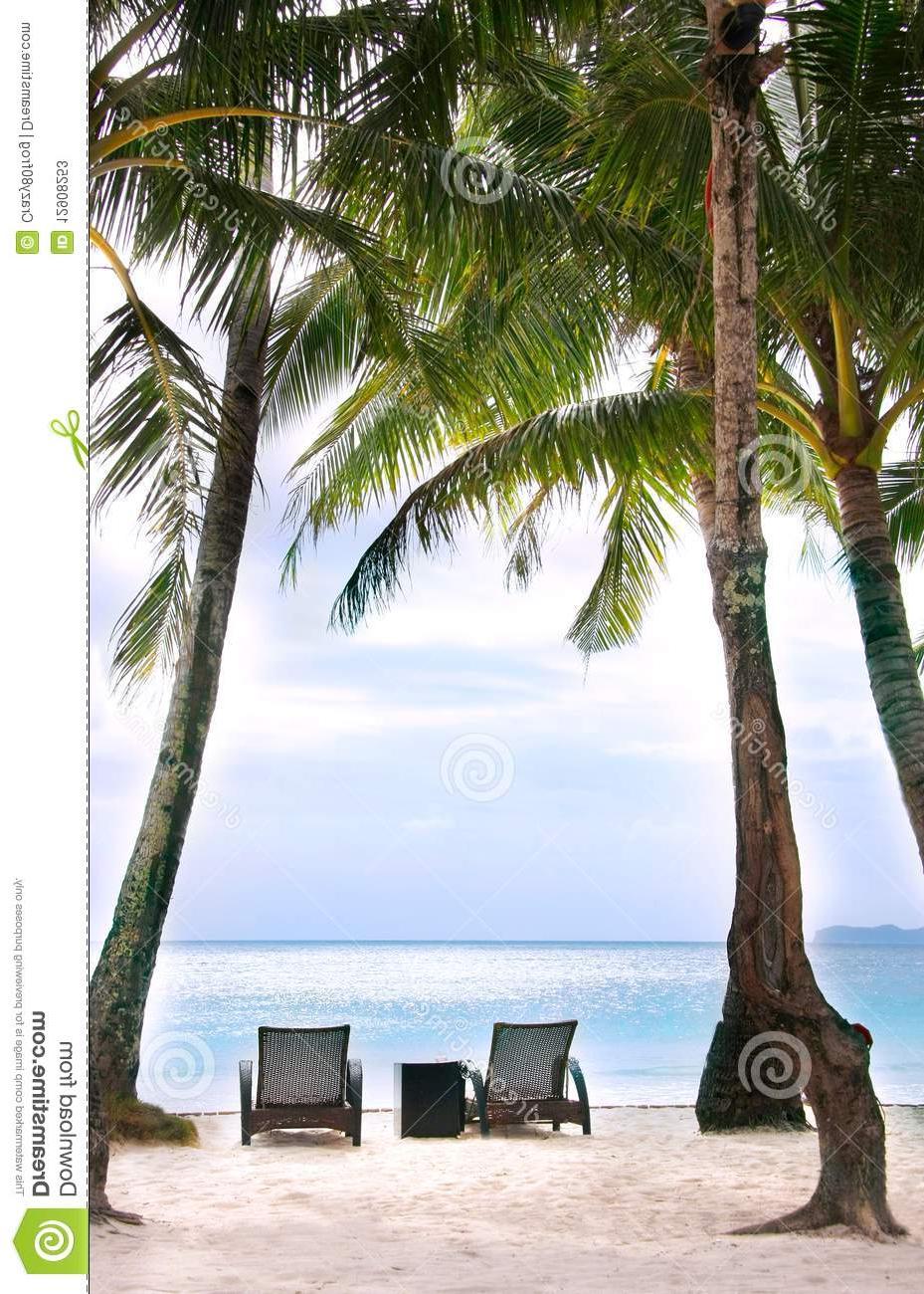 Sillas Las Palmas E9dx Sillas Y Palmas En La Playa Imagen De Archivo Imagen De Azul