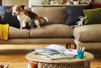 Sofa Com Txdf How to Take Care Of Your sofa sofa