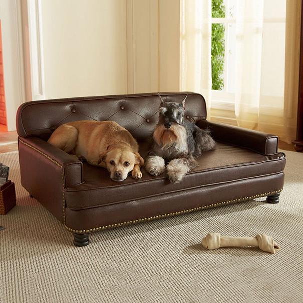 Sofas Para Perros Ffdn sofa De Lujo Para Perros Muy Exigentes Noticias De Perros