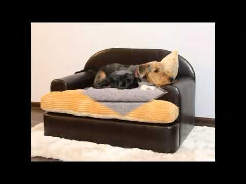 Sofas Para Perros Irdz Fabricacion De sofas Para Perros Youtube