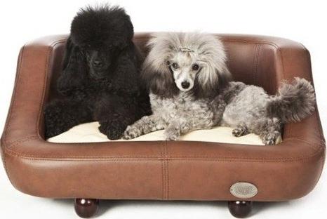 Sofas Para Perros X8d1 sofas Y Perros Espaciohogar