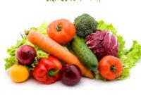 Verduras Thdr Verduras Y Hortalà Zas Ecolà Gicas Online
