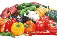 Verduras Tldn Noticias sobre Verduras El Espaà Ol